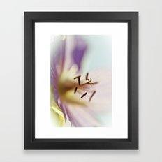 Lilac Blues Framed Art Print
