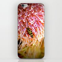 Buggin' Out iPhone & iPod Skin