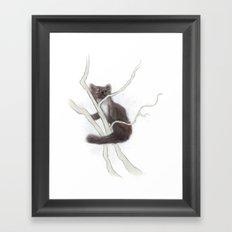 Pine Marten 2 Framed Art Print