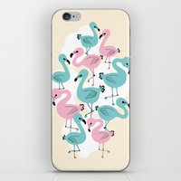 Flamingo Go Go iPhone & iPod Skin