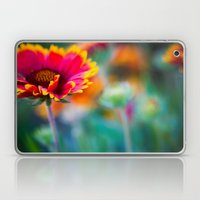 Blanket Flower Laptop & iPad Skin