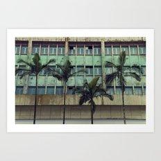 Palms in the city Art Print