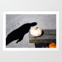 Little white pumpkin Art Print