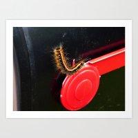 Caterpillar On The Mailb… Art Print