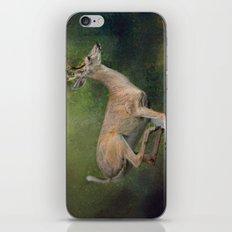 Buck on the Run - Deer - Wildlife iPhone & iPod Skin