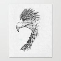 Black Eagle Canvas Print