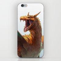 Pokemon-Charizard iPhone & iPod Skin