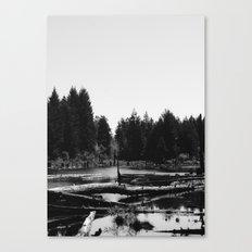 Witch's Bog Canvas Print