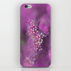 Dream in pink iPhone & iPod Skin