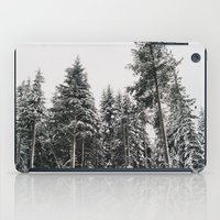 Snowy Paradise iPad Case