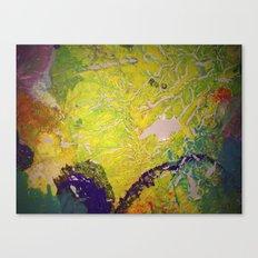 Blanket Detail II Canvas Print