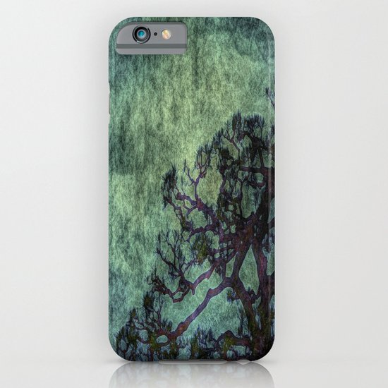 Early Summer iPhone & iPod Case