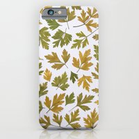 Parsley Autumn iPhone 6 Slim Case
