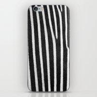 Zebra Stripes & Back iPhone & iPod Skin
