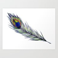 Art Print featuring The Peacock's Feather by ECMazur