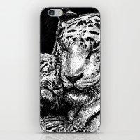 Mother & Cub iPhone & iPod Skin