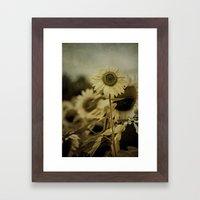 Sunny Field Framed Art Print
