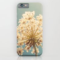 iPhone & iPod Case featuring Queen Anne's Lace by Cassia Beck