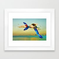 Exotic Macaws Framed Art Print