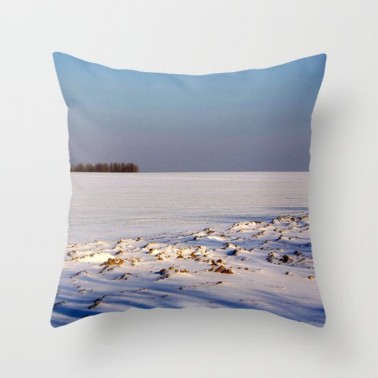 Void of Winter Throw Pillow