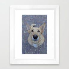 Treat? Framed Art Print