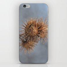 Piri Piri iPhone & iPod Skin