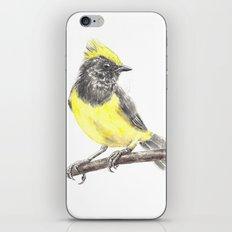 Tit iPhone & iPod Skin