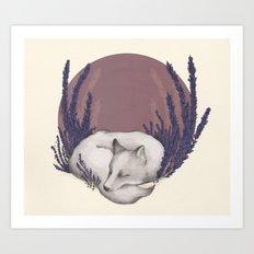 Fox & Lavender Art Print