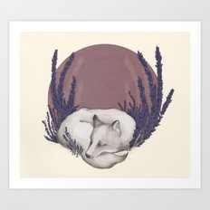 Fox & Lavender Art Print