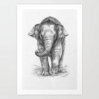 Baby Elephant G046 Art Print