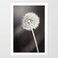 My Most Desired Wish Art Print