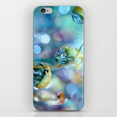 Rainbow Moss Drops iPhone & iPod Skin