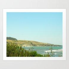 California Coast Floral II Art Print