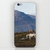 Connemara  - Horse and Mountains iPhone & iPod Skin