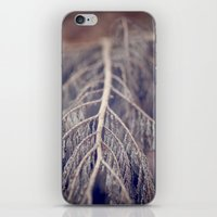 December's Anatomy iPhone & iPod Skin