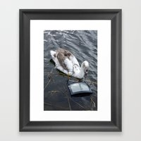 The Swan And The Tv Framed Art Print