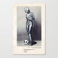 X-RAY VISION  Canvas Print
