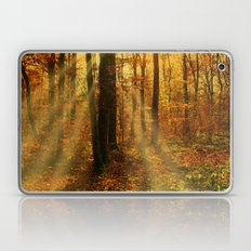 Did you see the fairies? Laptop & iPad Skin