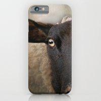 In a sheep's eye iPhone 6 Slim Case