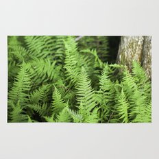 Enchanted Forest of Ferns Rug