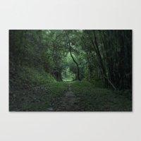 Green Portal Canvas Print