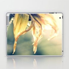 Tranquil Laptop & iPad Skin