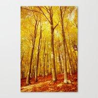 Forest Colors #1 Canvas Print