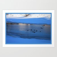 Ducks in icy waters Art Print