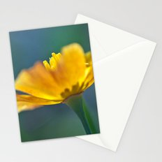 Escholtzia 30 Stationery Cards