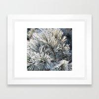 Frozen needles Framed Art Print