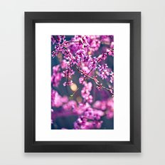 Spring has come 4 Framed Art Print