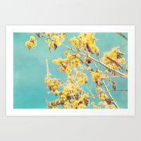 Yellow Against A Blue Sky Art Print