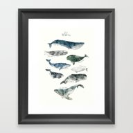 Framed Art Print featuring Whales by Amy Hamilton