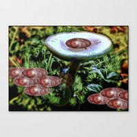 Surrealist Late Night Mushroom Party Canvas Print